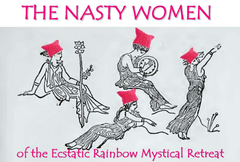 The Nasty Women Logo